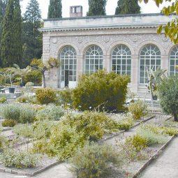 Montpellier_jardin_plantes3